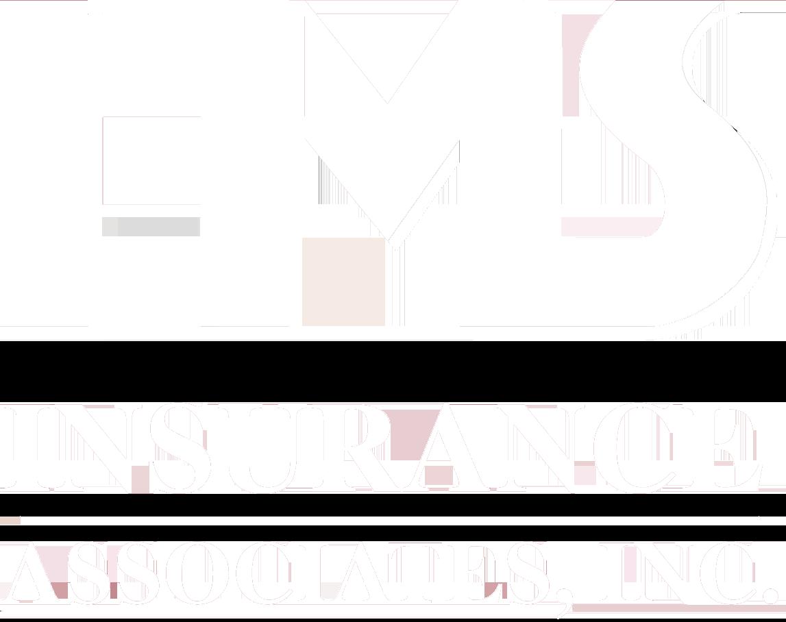 HMS Insurance